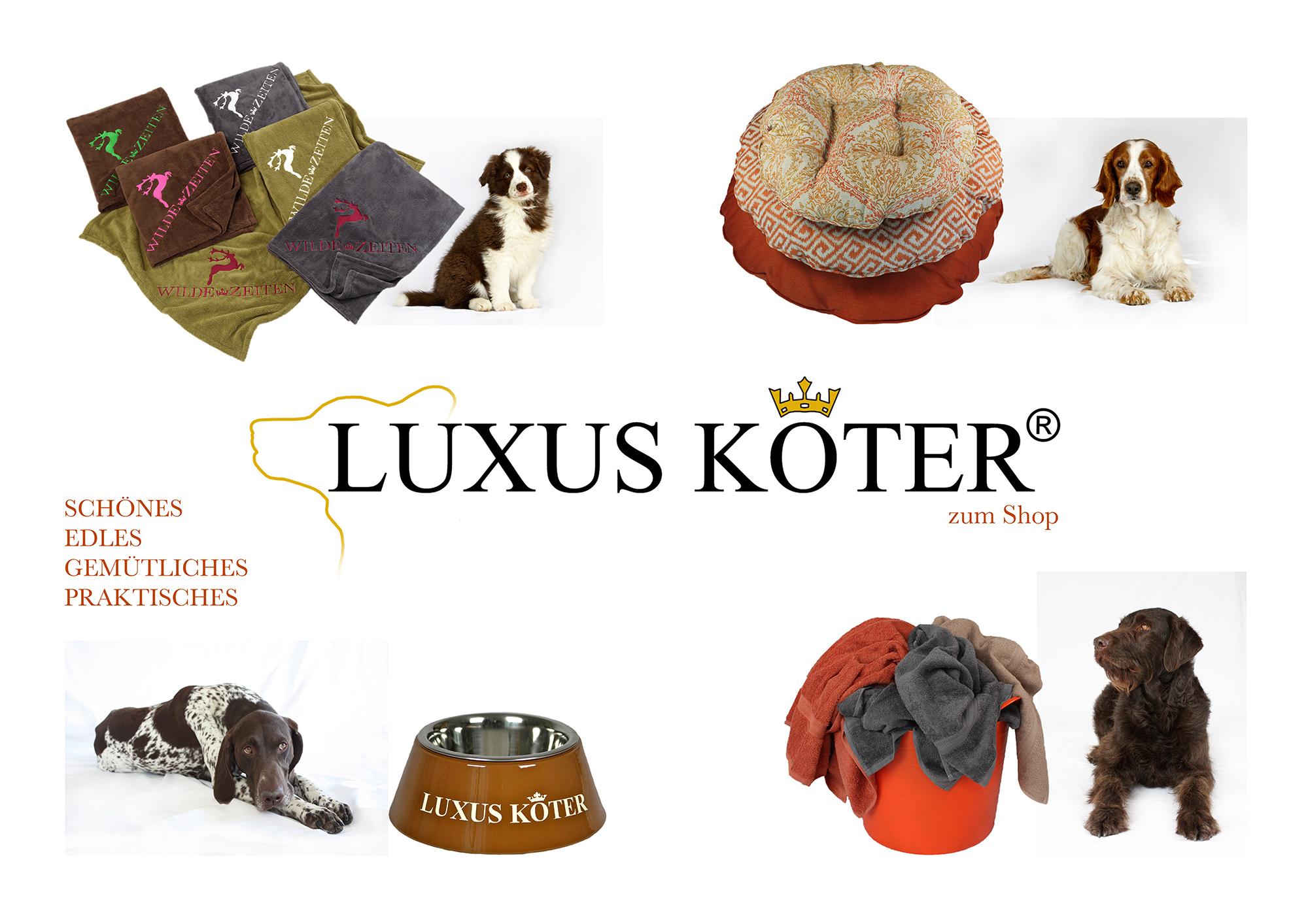 Luxuskoetereu Im Internetshop Von Luxus Köter Einem Shop Für